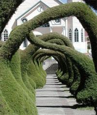 Costa Rica: Zarcero topiary
