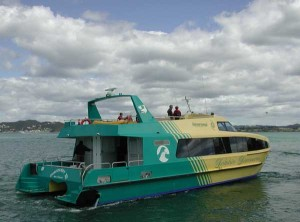 Dolphin Tours, Russell, New Zealand